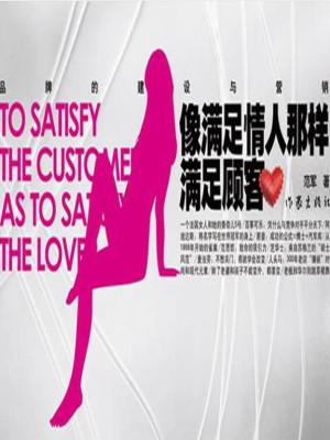 《像满足情人那样满足顾客:品牌的建设与营销》PDF电子书下载