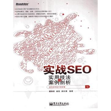 藏锋者《实战SEO-实用技法与案例剖析》扫描版pdf电子书下载