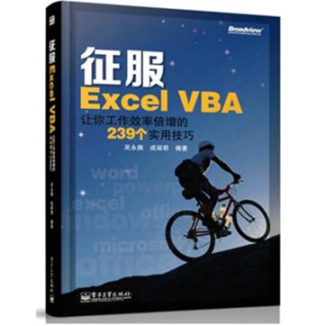 《征服Excel VBA:让你工作效率倍增的239个实用技巧》pdf电子书下载