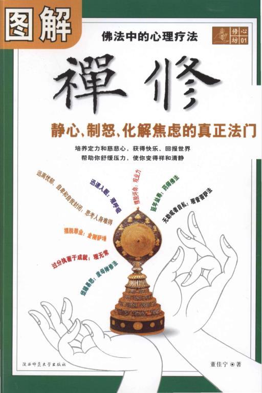 《图解禅修:佛法中的心理疗法》PDF电子书下载