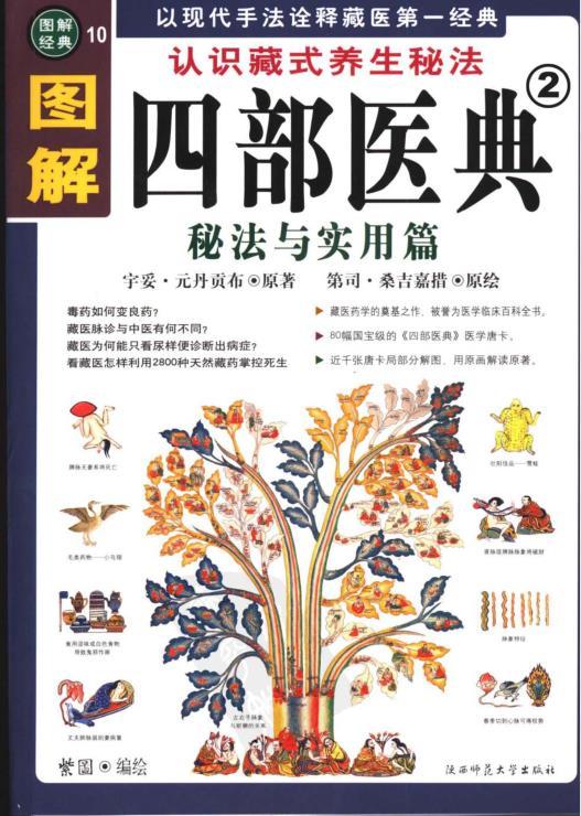 《图解四部医典 上下部》PDF文字版电子书下载