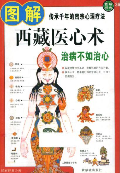 《图解西藏医心术:治病不如治心》PDF免费下载
